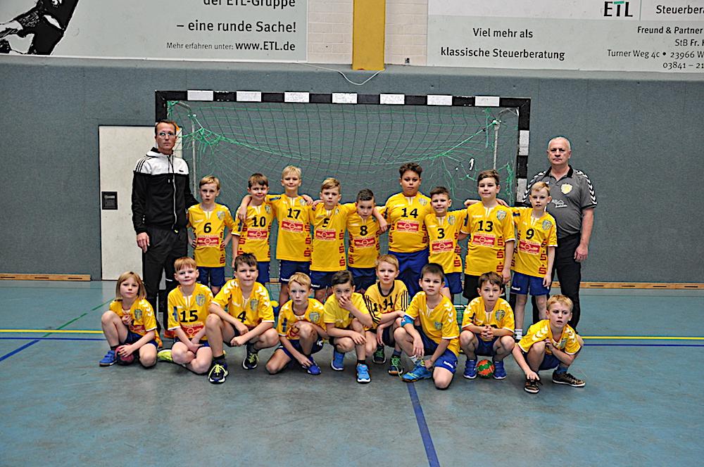 Mecklenburger Jungstiere
